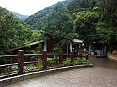 滿月圓森林雨中漫步:PICT0097a.jpg