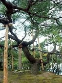 日本北陸~ 金澤兼六園 -:PICT0017a.jpg