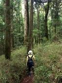 「 水漾森林」~尋幽探祕:PICT0095a.jpg