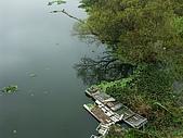 峨眉湖十二寮步道採桔:PICT0025a.jpg