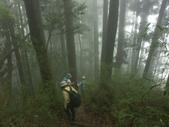 「 水漾森林」~尋幽探祕:PICT0102a.jpg