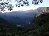 司馬庫斯山林漫步:IMG_4355a.jpg