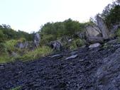 司馬庫斯山林漫步:IMG_4368a.jpg