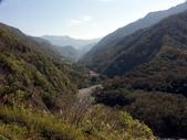 春訪奧萬大森林遊樂區:PICT0007a.jpg