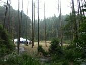 「 水漾森林」~尋幽探祕:PICT0105a.jpg