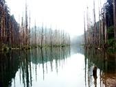 「 水漾森林」~尋幽探祕:PICT0106a.jpg