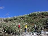 草山- 芒浪, 秋色欲燃:PICT0205a.jpg
