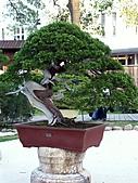 台北瘋花博 ~養生館:PICT0135a.jpg