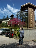 鹿谷內湖國小,美景如畫~:PICT0128a.jpg