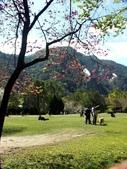 春訪奧萬大森林遊樂區:PICT0035a.jpg