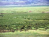 走進西藏:~青藏鐵路/西寧塔爾寺/北京(過境) :PICT0043m.jpg