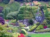 百分百玩加4-B:維多利亞--布查花園(Butchart Garden ):P1010236a.jpg