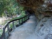 太魯閣之砂卡礑溪步道:PICT0039a.jpg
