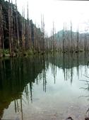 「 水漾森林」~尋幽探祕:PICT0121a.jpg