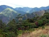 這一季的高山農場~武陵+福壽山:PICT0166a.jpg