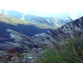 這一季的高山農場~武陵+福壽山:PICT0109a.jpg