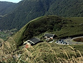 草山- 芒浪, 秋色欲燃:PICT0216a.jpg