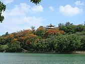 高雄鳥松鄉澄清湖:DSC00741.JPG