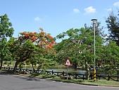 高雄鳥松鄉澄清湖:DSC00757.JPG