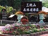 高雄旗山三桃山森林遊樂區:DSC00331.JPG
