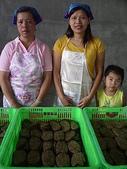 960915二水水鄉米香產業文化-二水農會供銷部:PICT0156.JPG