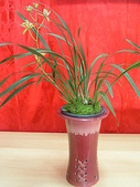 960915二水水鄉米香產業文化-二水農會供銷部:PICT0060.JPG