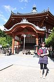 奈良公園:017.JPG