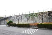 嘉義新港阪頭村的三大壁畫:「原鄉四季」的苦楝花006.JPG