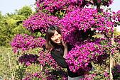 田尾公路花園:008.jpg