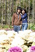 杉林溪森林遊樂區:055