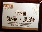2012 林田山木雕:IMG_4685.jpg