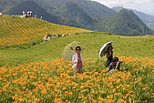 六十石山:IMG_0170