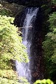內洞森林遊樂區:022