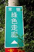 東豐綠色走廊:018.jpg