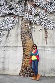 嘉義新港阪頭村的三大壁畫:「原鄉四季」的苦楝花015.JPG