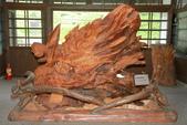 2012 林田山木雕:IMG_4677.jpg
