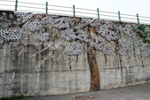 嘉義新港阪頭村的三大壁畫:「原鄉四季」的苦楝花009.JPG