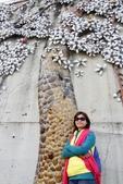 嘉義新港阪頭村的三大壁畫:「原鄉四季」的苦楝花016.JPG