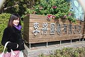 田尾公路花園:014.jpg