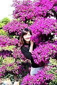 田尾公路花園:170.jpg