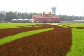 2017屏東熱帶農業博覽會:022.JPG