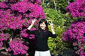 田尾公路花園:180.jpg