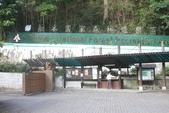 2012知本森林遊樂區:007.JPG