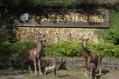2012知本森林遊樂區:009.JPG