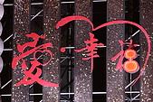 2008高雄燈會(3)-開幕-璀璨之夜:006.JPG