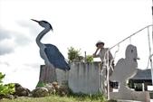 亞馬遜生態休閒農莊賞鳥:027.JPG