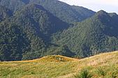 六十石山:IMG_0264
