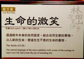 2012 林田山木雕:IMG_4678.jpg