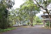 宜蘭大學實驗林場:021.JPG