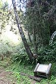 杉林溪森林遊樂區:002